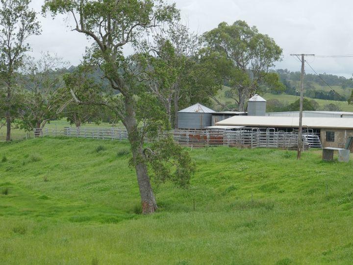 45 Green Pigeon Road, Kyogle, NSW