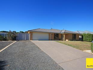Great House and really handy Shed - Bungendore