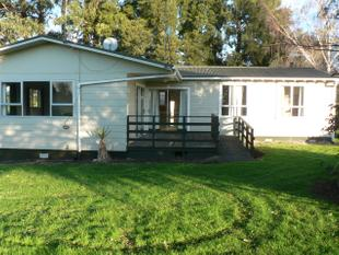 Four Bedroom Rural Property - Te Awamutu