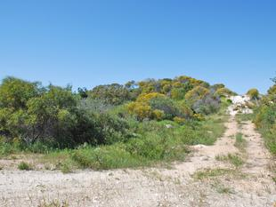 Escape To The Country (Marine Fields Estate) - Jurien Bay