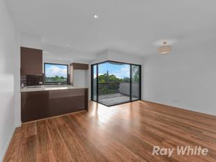 Brand new unit with amazing views - Norman Park