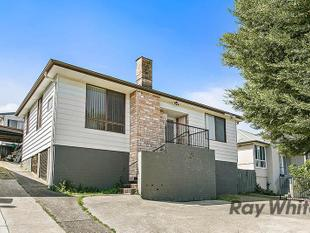 Freshly painted four bedroom home - Unanderra