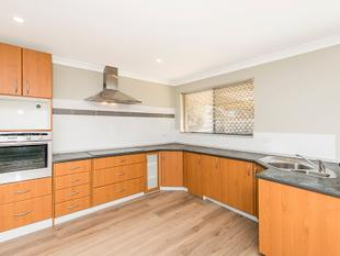 GREAT VALUE - BIG BLOCK - Parmelia