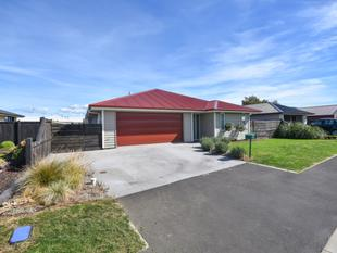 *Price Reduced* - Highland Park High Life - Mosgiel