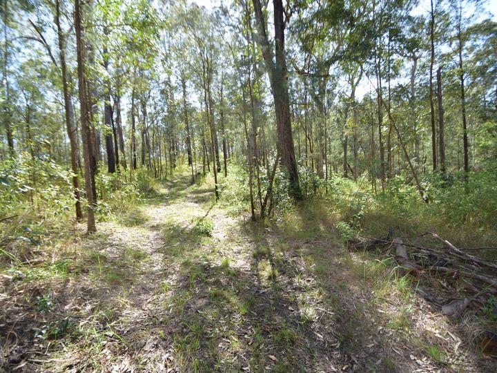 282 Whipbird Drive, Buaraba, QLD