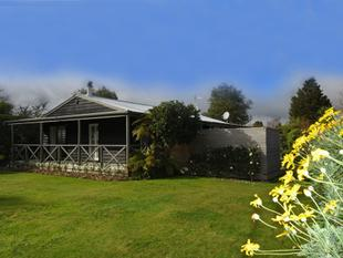 Charming Cottage in Greytown - Greytown