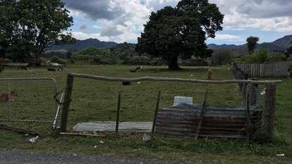 1690c Waikare Road, Waikare