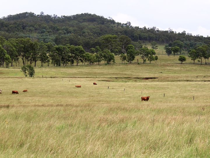 LOT 23 Morden Road, Biarra, QLD