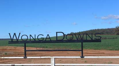 """ Wonga Downs"", Bellata"