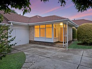 Superb Unit In Prestigious Location close to all amenities and CBD - A Must See! - Kensington Gardens