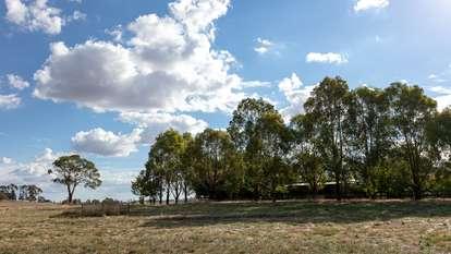 Lot 5 - 65 Eucalyptus Close, FOREST REEFS