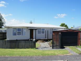 Affordable on the Peninsula! - Te Atatu Peninsula