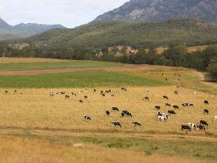 Looking for a Quality Farm than you must look at this. - Mount Barney