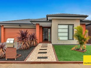 Beautiful Family Home looking for its First ever tenants! - Point Cook