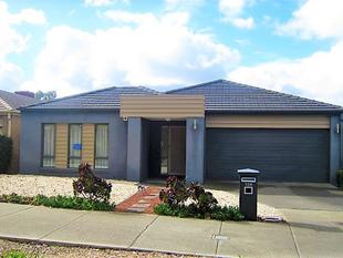 Modern & Stylish in a Great Location! - Epping