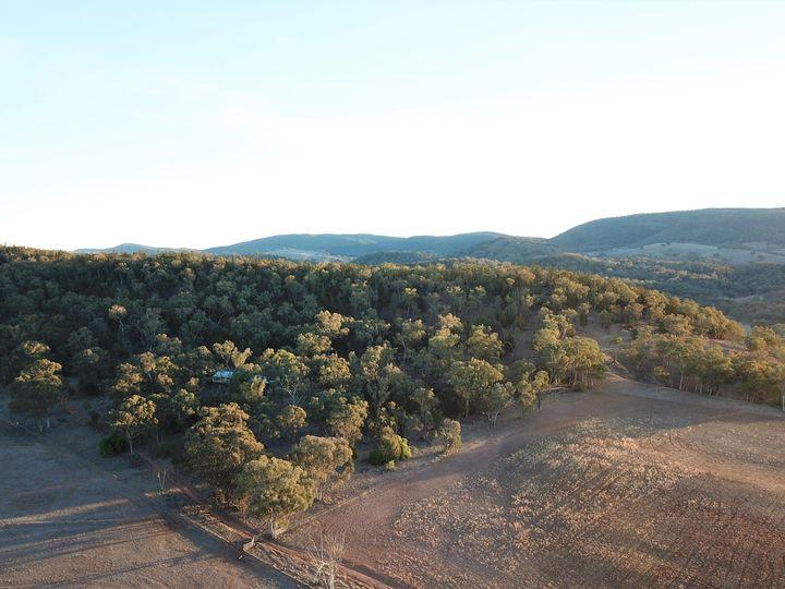 'Fox Hill' 573 Blathery Creek Road, Neurea, NSW