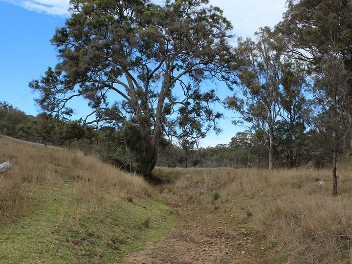 Lot 5 New England Highway, The Glen, QLD
