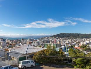 Home & Income with Views & Potential! - Aro Valley