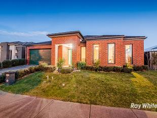 FAMILY LIVING IN SELANDRA RISE - Clyde North