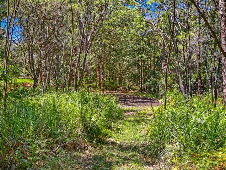 113 Maitland Bay Drive, Killcare Heights, NSW