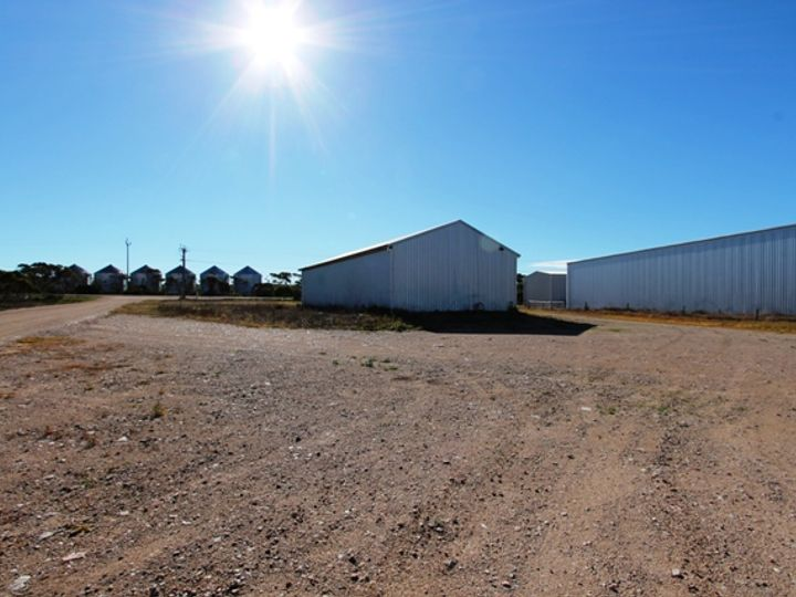 Section 445 Rudall Road, Cleve, SA