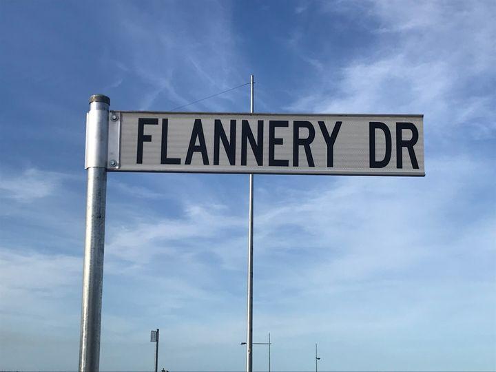 Lot 2719 Flannery Drive, Calderwood, NSW