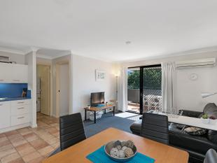 Fully Furnished Unit in Clayfield with WIFI INCLUDED! - Clayfield