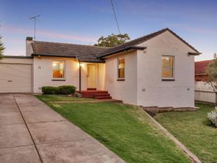 Solid Brick Home on Manicured Traditional 820 sqm Allotment - Clearview