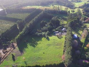 Come and Discover this 10 acre Wonderland - Kerikeri