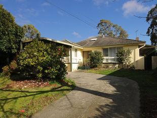 IMMACULATE 4 BEDROOM FAMILY HOME! - Glen Waverley