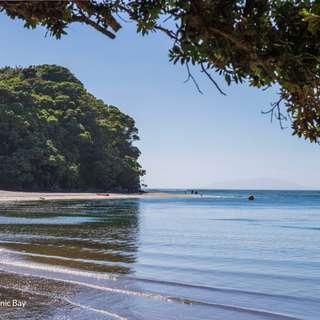 Thumbnail of 17 Robert Hastie Drive, Mangawhai Heads, Kaipara District 0505